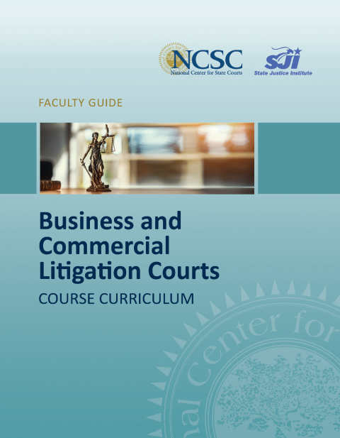 Business and Commercial Litigation Courts Training